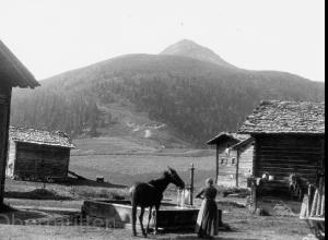 Dorfbrunnen-mit-Maulesel-1927